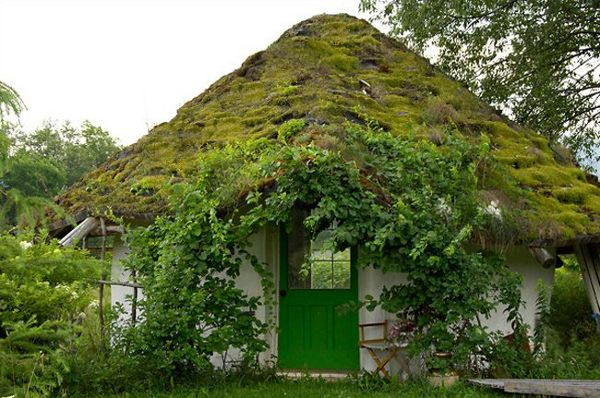 greenroof-yurt